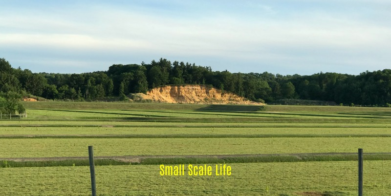On the Road: Exploring Tomah, Wisconsin