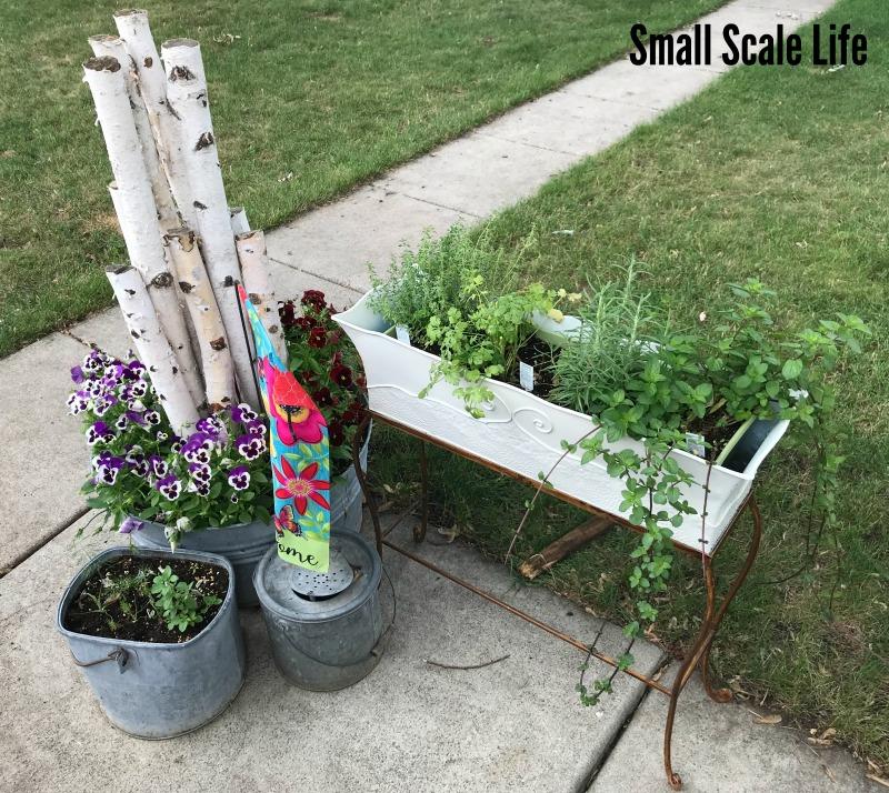 Garden, patio herb garden
