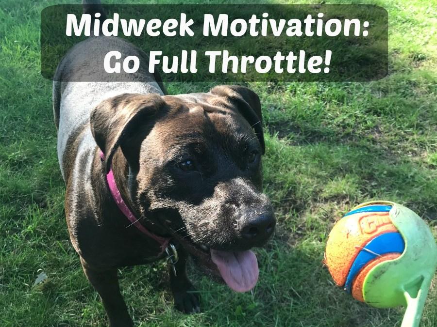 Midweek Motivation. Motivation, Go for it, go full throttle