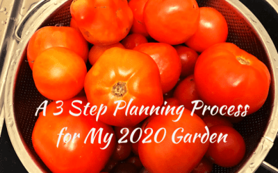 A 3-Step Planning Process for My 2020 Garden