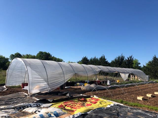 Building an Urban Farm from Scratch, tunnel