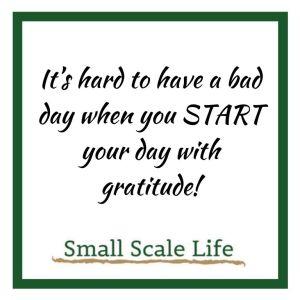 practicing gratitude quote