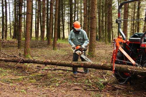 Small Wood Lot Tools  Timber Maintenance Precommercial