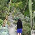 uc berkeley botanical garden