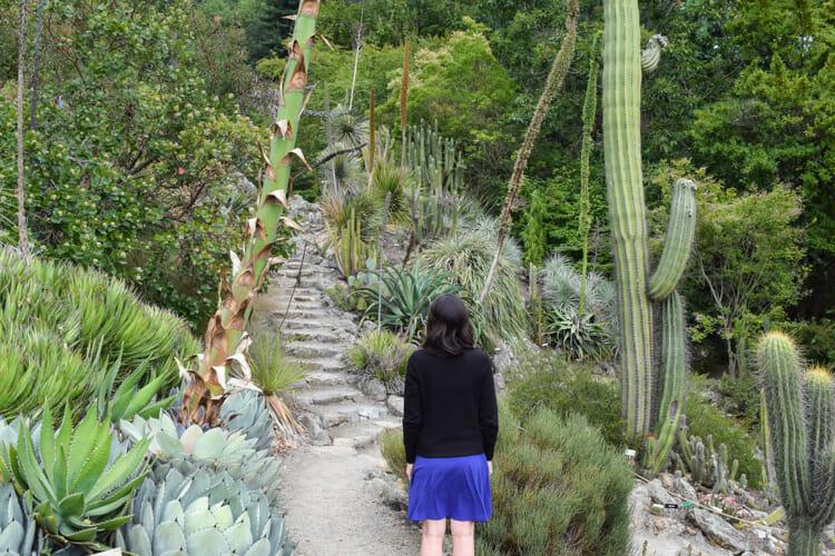 A Breath of Fresh Air: UC Berkeley Botanical Garden