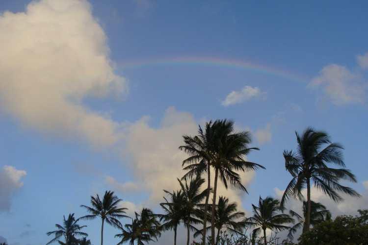 Garden Isle Exploration: A 4-Day Kauai Itinerary