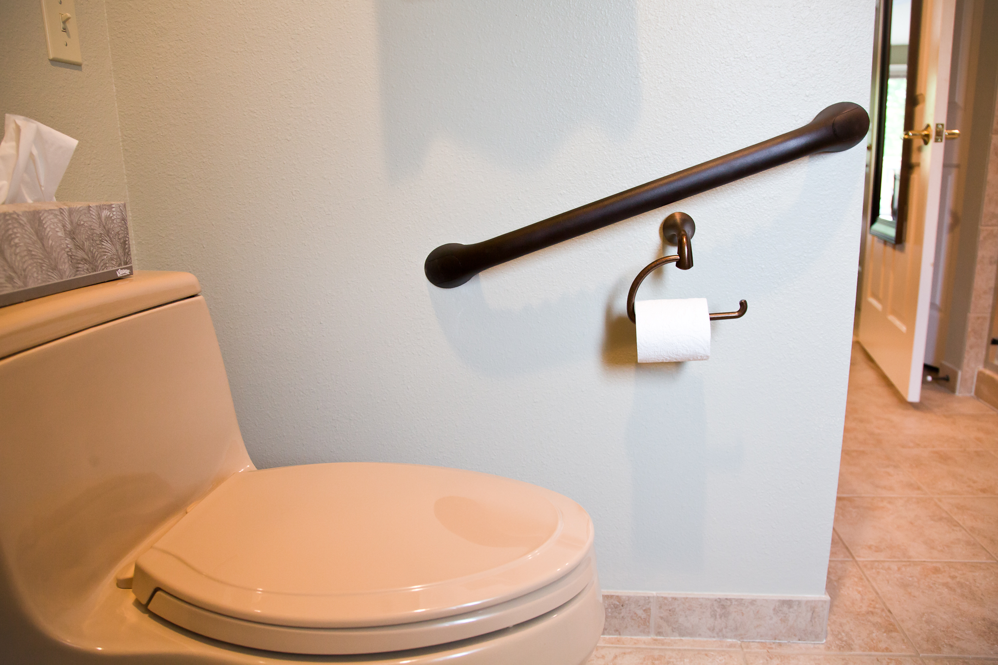 Superieur Handicap Toilet Grab Bars Bathroom