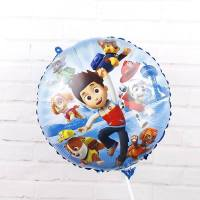 Balon Folie Ryder & Patrula Catelusilor, 45 cm