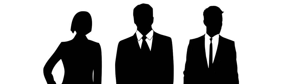 THE-ROLES-OF-DIRECTOR-AND-COMMISIONER-OF-A-LIMITED-LIABILITY-COMPANY-PT