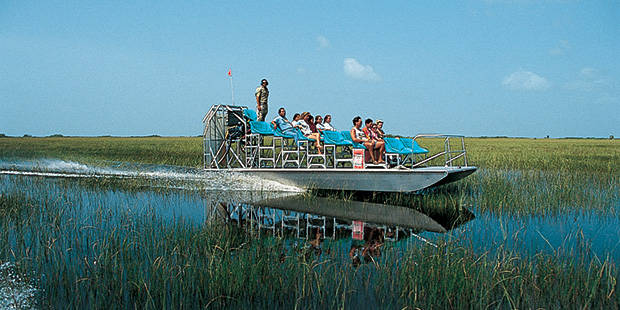 Gator Park Airboat Tours 1