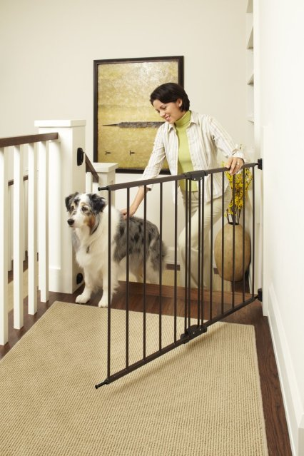 Dog Gates The Smart Dog Guide