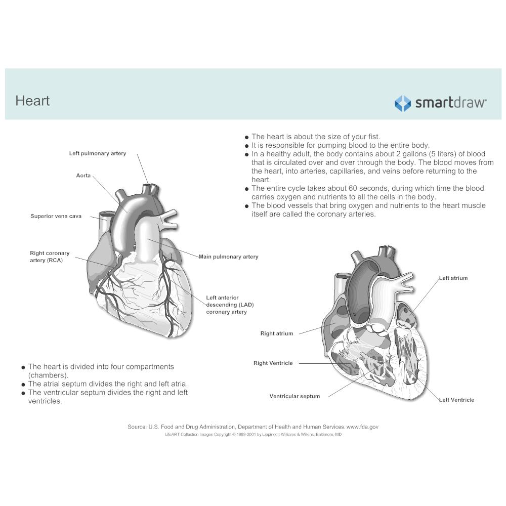example image heart [ 1000 x 1000 Pixel ]