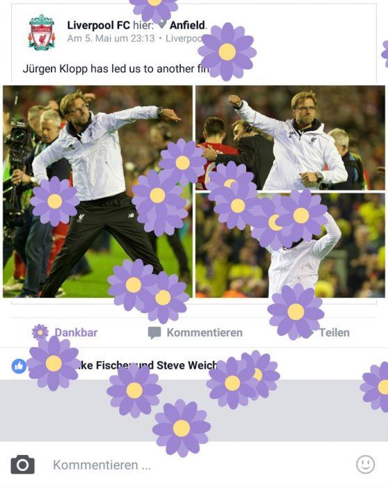 Facebook Dankbar Reaktion Blume (2)