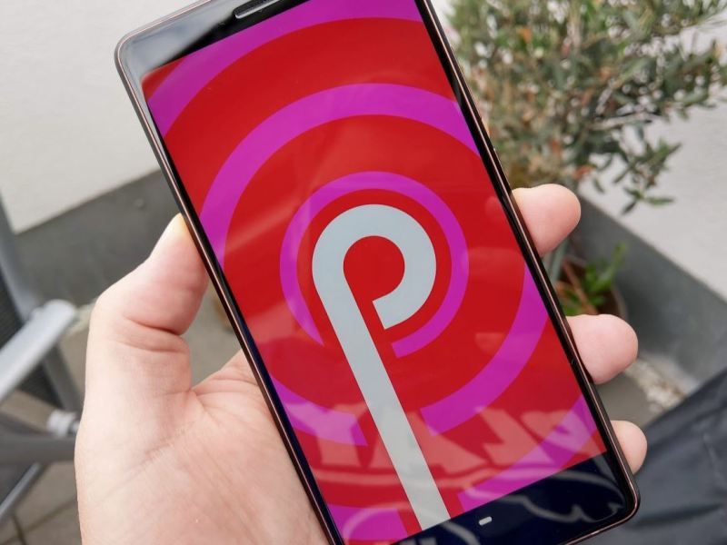 Android P Easter Egg Header