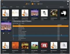 vlc-4-media-library-screenshot