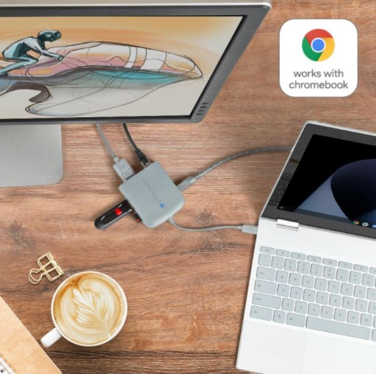 Works With Chromebooks