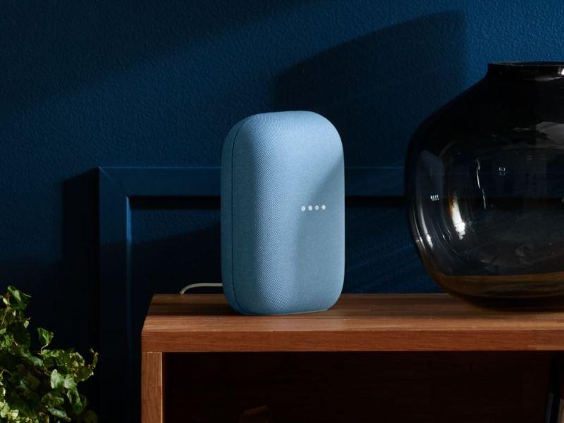 Google Nest Speaker