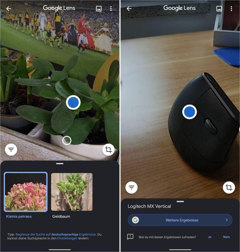 Google Lens Screenshots 2