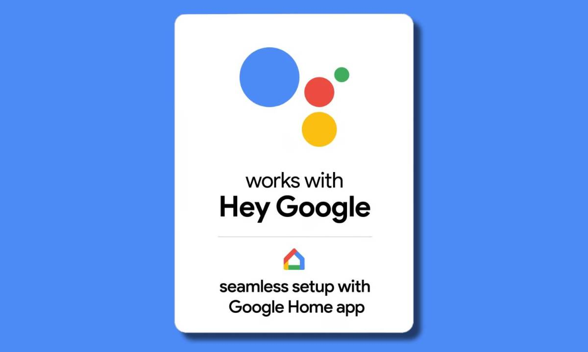 Works With Google Assistant Seemless Setup Google Home