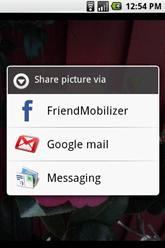 friends mobilizer