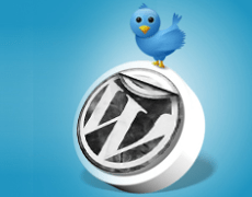 Twitter WordPress integration