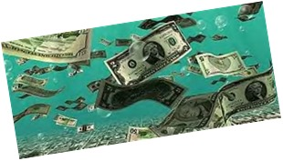 richest swimmers 2013