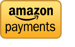 Amazon Payments Best Check out Systems for e-commerce Sites