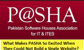 What Makes PASHA So Excited When They Could Not Build a Single Website