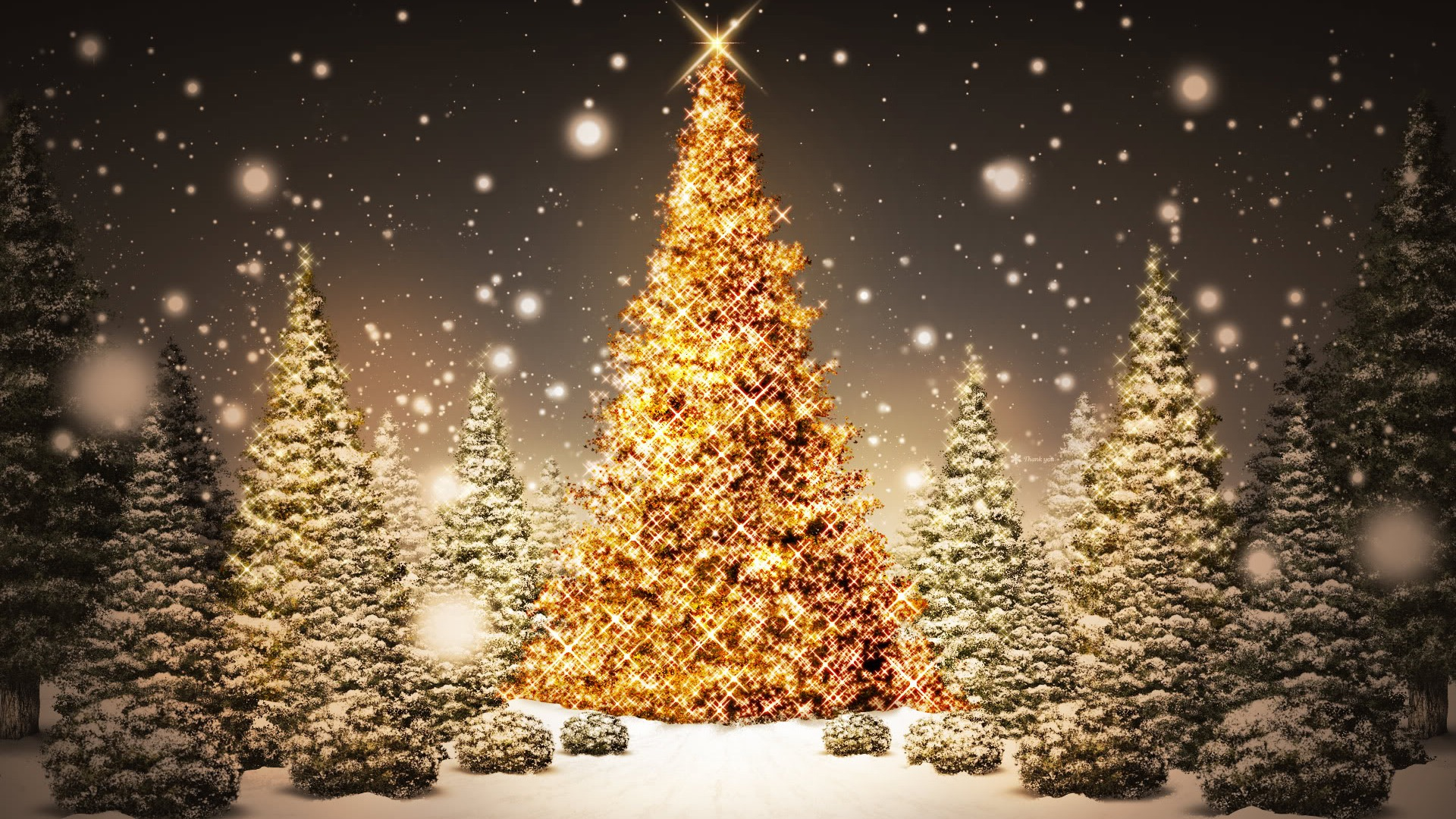 10 Countries That Do Not Celebrate Christmas At All – Famous Naija