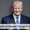 Net Worth of Donald Trump in 2016