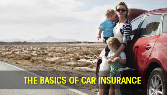 The basics of car insurance: