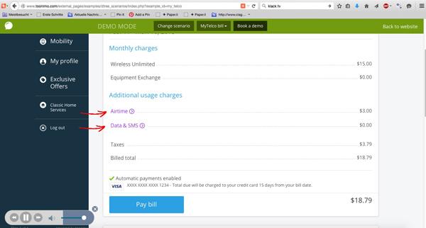 Software-Lotsen begleiten Kunden auf der Website