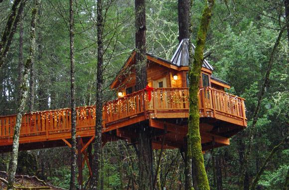 Vertical Horizons Treehouse Paradise - Cave Junction, Oregon