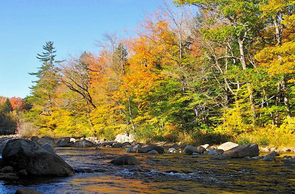 White Mountain Trail (New Hampshire)