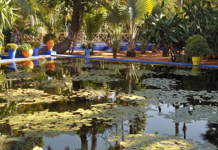 Daily Daydream: Jardin Majorelle, Morocco