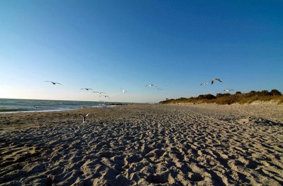 Venice Beach, Near Sarasota, Florida