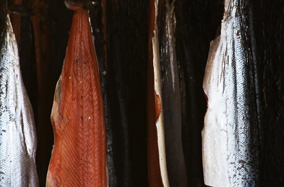 British Columbia's Salmon