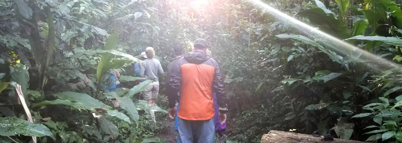 hikers in amazon rainforest