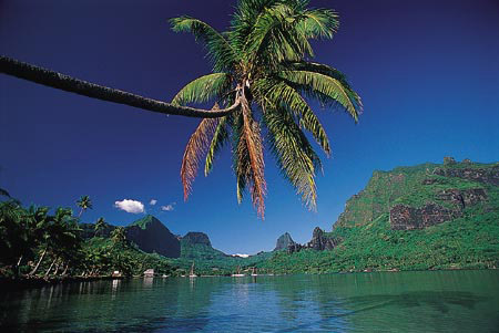 Win a Cruise of Tahiti and the Society Islands