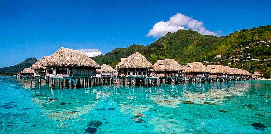 overwater bungalows sofitel moorea la ora beach resort