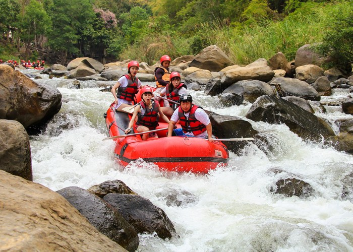 7 Amazing American Rivers for Whitewater Rafting