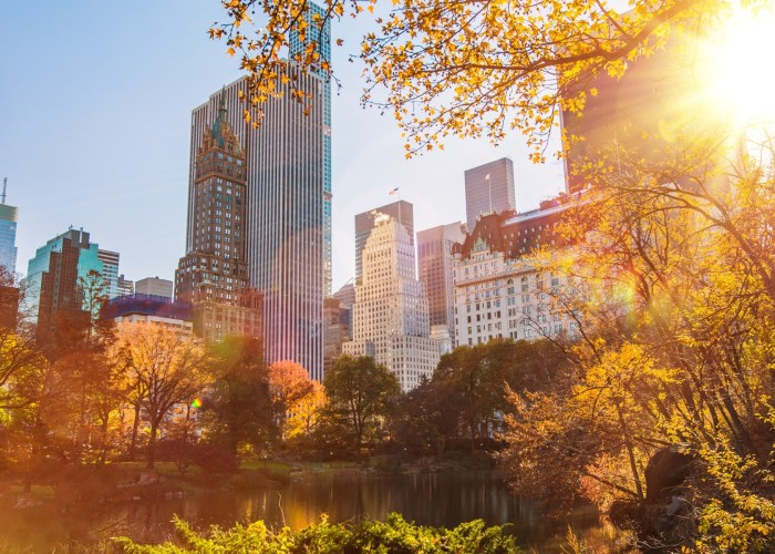 Everything to Do for Free in NYC This Fall