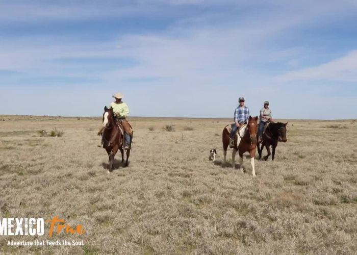 Burnt Well Guest Ranch – A New Mexico True Experience