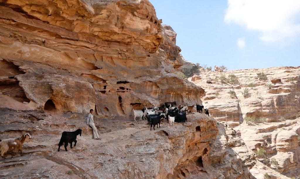 back route to petra jordan travel