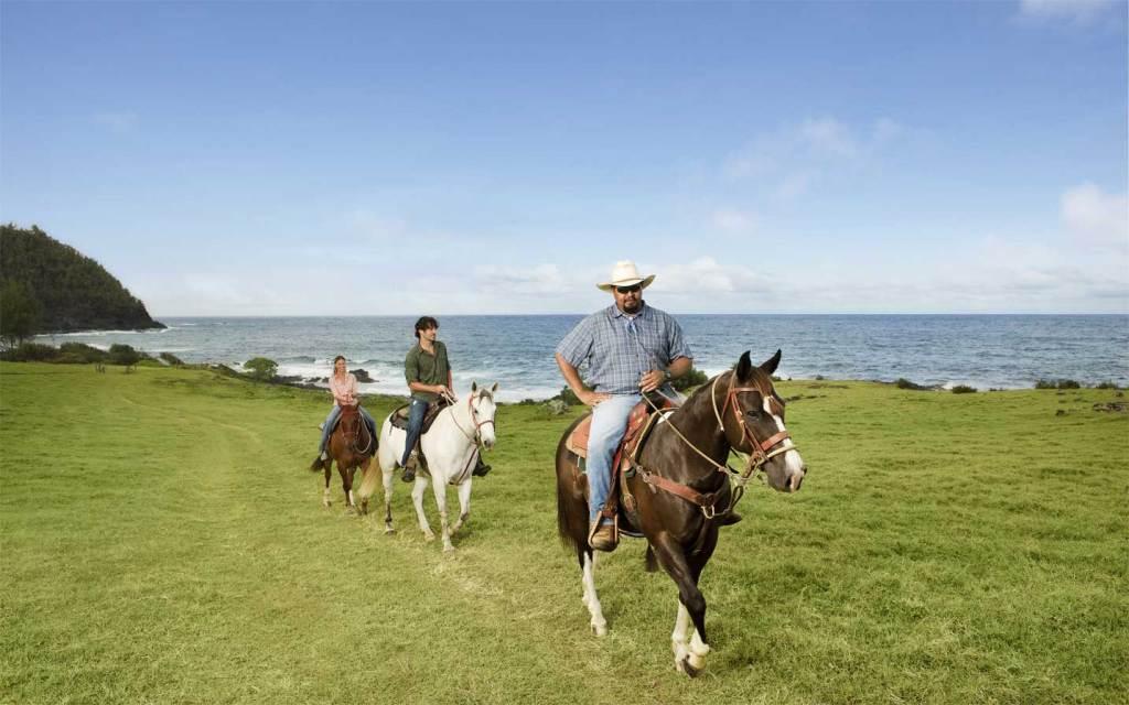 coastal-horseback-riding-travaasana-hana.