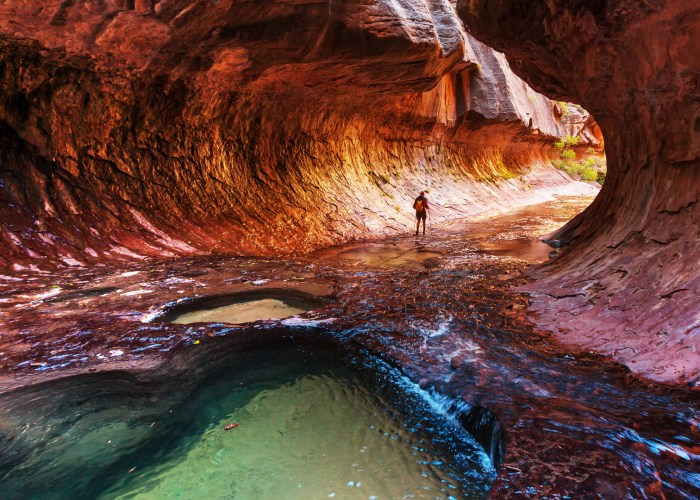 Narrows Zion National Park.