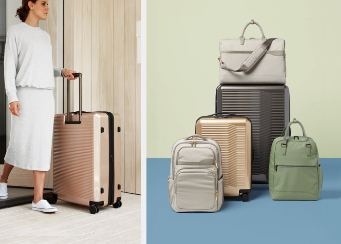 Target premium luggage collection
