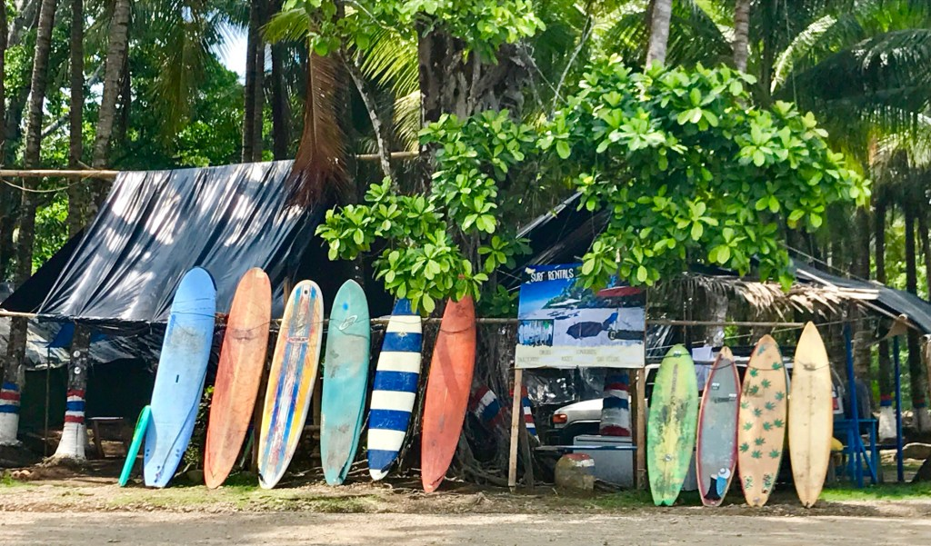 surf boards lined up at beach