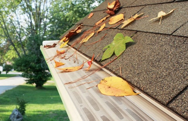 KC Gutter protection