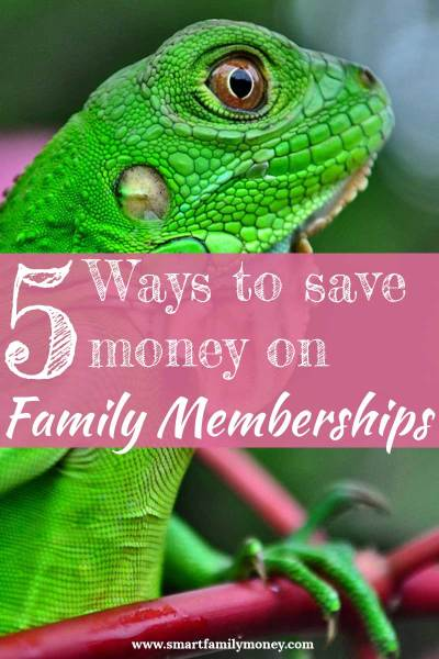 5 Ways to Save Money on Family Memberships to the Pool, Zoo, Science Center, and Museums